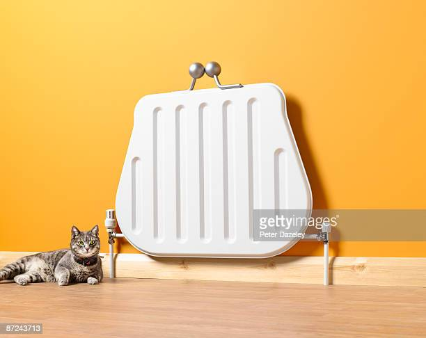 Purse shaped radiator with cat.