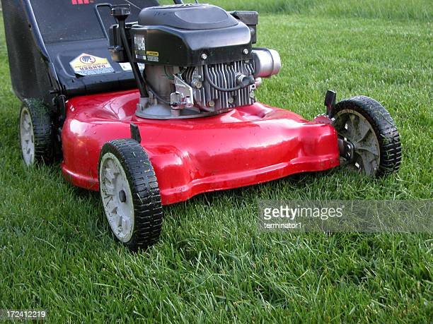 push lawnmower - crabgrass stock pictures, royalty-free photos & images