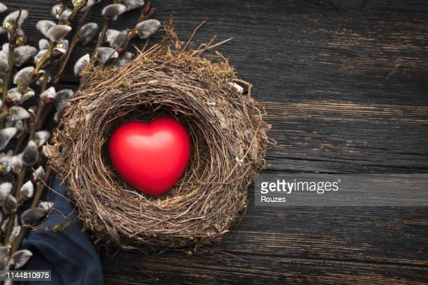 pussy willow and red heart in nest - dirty easter stock pictures, royalty-free photos & images