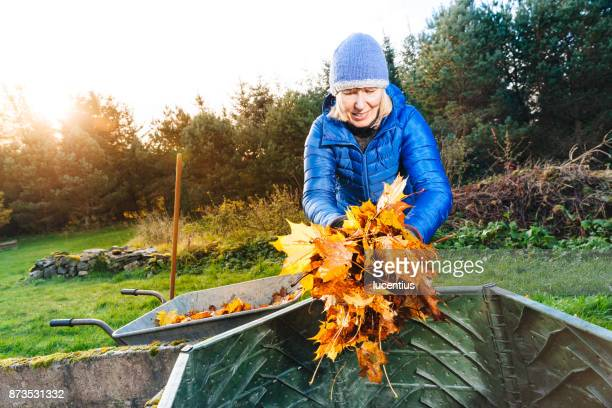 Putting fall leaves in compost bin.