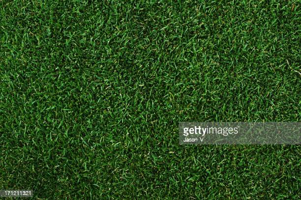 Putting green background