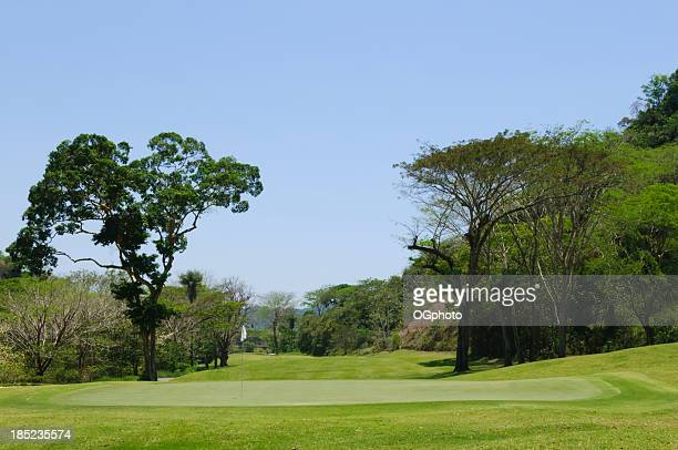 putting green in tropical golf course - ogphoto stock pictures, royalty-free photos & images