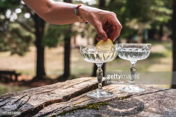 Putting Lemon in a Crystal Glass in the Forest.