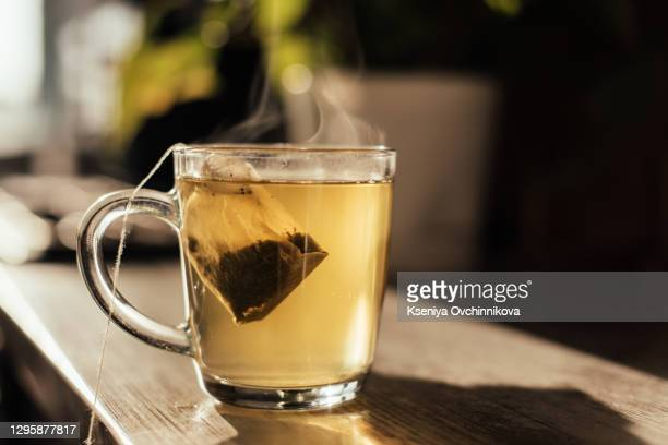 putting tea bag into glass cup full of hot water - tea hot drink stock pictures, royalty-free photos & images