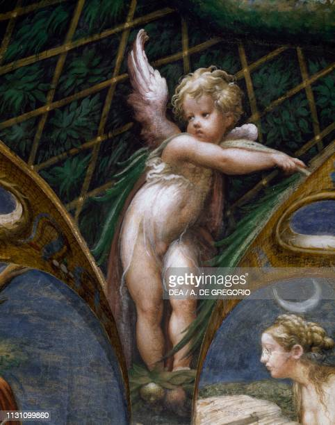 A putto and Diana's face Myth of Diana and Actaeon ca 1524 by Francesco Mazzola known as Parmigianino fresco west side of the Room of Diana and...