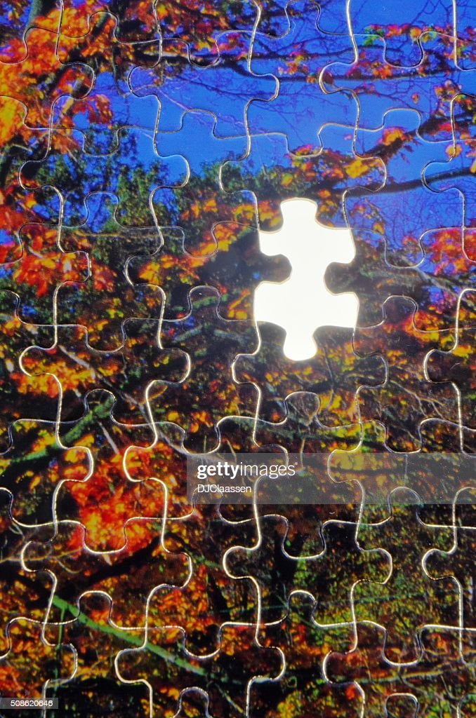 Puzzle Piece Missing : Stock Photo