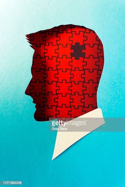 puzzled human head illustration - in silhouette stock pictures, royalty-free photos & images