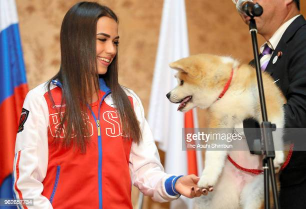 Pyeongchang Olympic Figure Skating Ladies Singles gold medalist Alina Zagitova meets 'Masaru' Akita inu dog presented by Japan on May 26 2018 in...