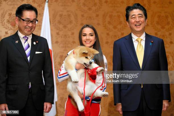 Pyeongchang Olympic Figure Skating Ladies Singles gold medalist Alina Zagitova holds 'Masaru' Akita inu dog presented by Japan on May 26 2018 in...
