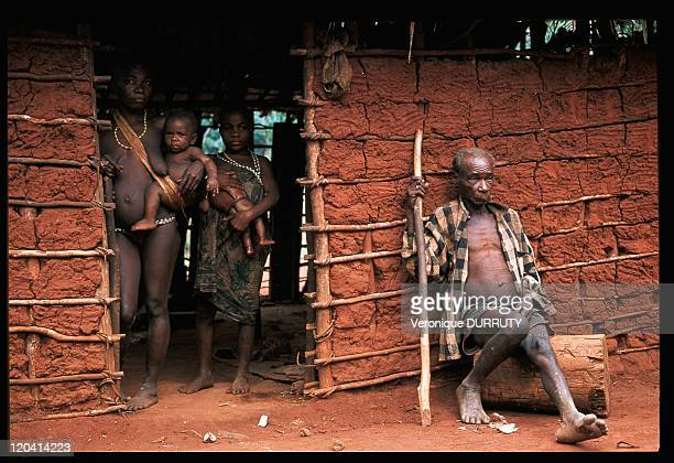 Pygmies family in Central African Republic Man resting in front of the house where he lives with his two wives Pygmies live in polygamy They have...