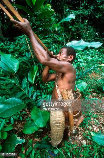 Pygmy Hunter Aiming Crossbow