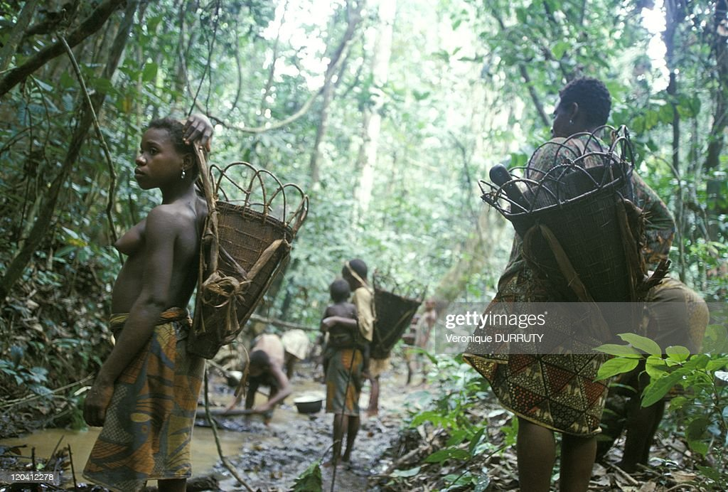 Pygmy Woman Aka In The Fishing In Central African Republic In 2001 - : News Photo