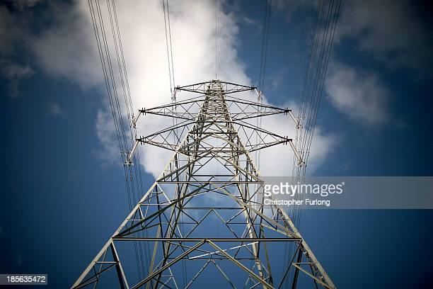 A pylon carries electricty from the Wylfa nuclear power station on October 23 2013 in Tregele Anglesey United Kingdom The government has announced...