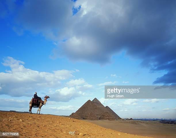 pyramid and camel rider in egypt - hugh sitton - fotografias e filmes do acervo