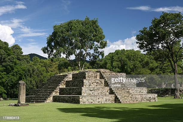 pyramid in precolumbian old city copan - honduras stock pictures, royalty-free photos & images