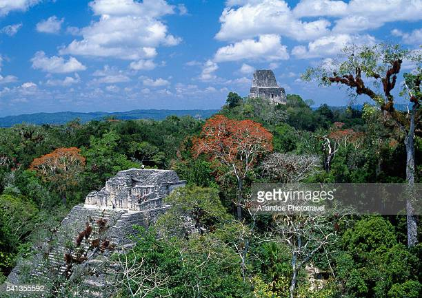 pyramid of el mundo perdido and temple iv - guatemala stock pictures, royalty-free photos & images