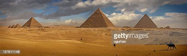 pyramids - giza stock pictures, royalty-free photos & images