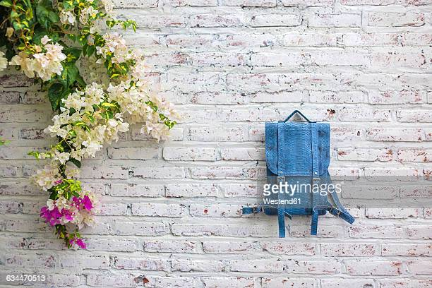 Python leather bag and flower at brick wall