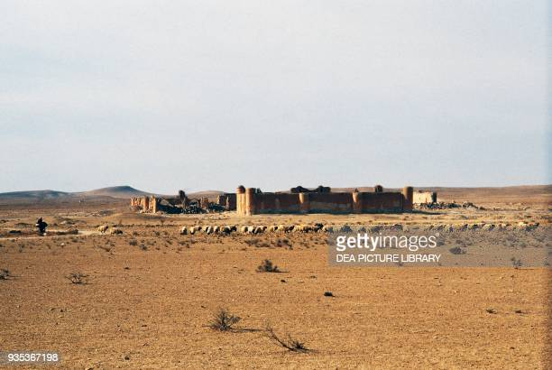 syrian desert stock photos and pictures