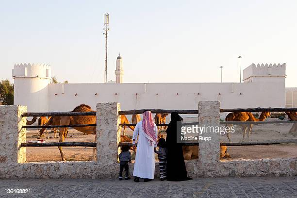 Qatari family in their traditional clothes called dishdasha and abaya watch camels at the old Fort near Souq Waqif on December 24 2011 in Doha Qatar...