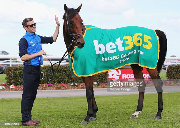 Qewy after winning race 7 the Bet365 Geelong Cup during the 2016 Geelong Cup at the Geelong Racing Club on October 19, 2016 in Geelong, Australia.