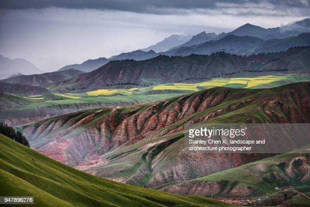 qilian mountain in qinghai - qinghai province stock photos and pictures