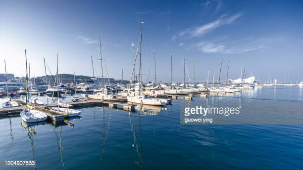 qingdao sailing pier in summer - marina stock pictures, royalty-free photos & images