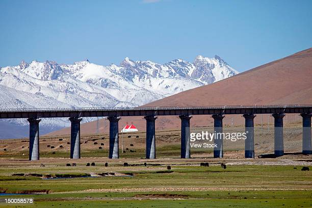 """qingzang road,china"" - qinghai province stock photos and pictures"
