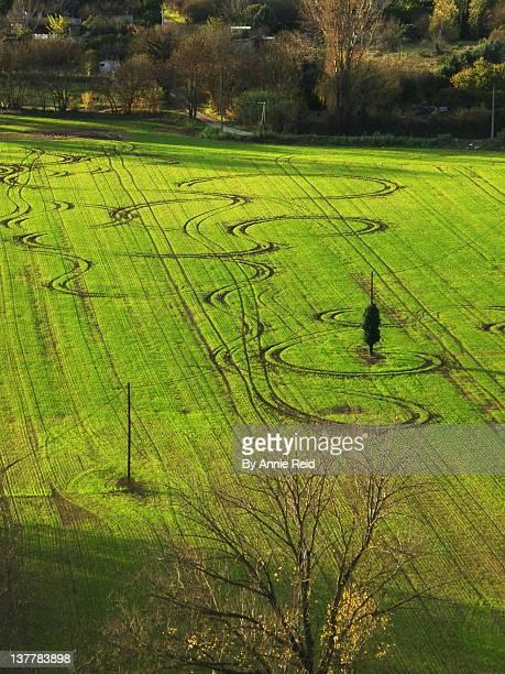 quad circles at field - crop circle imagens e fotografias de stock