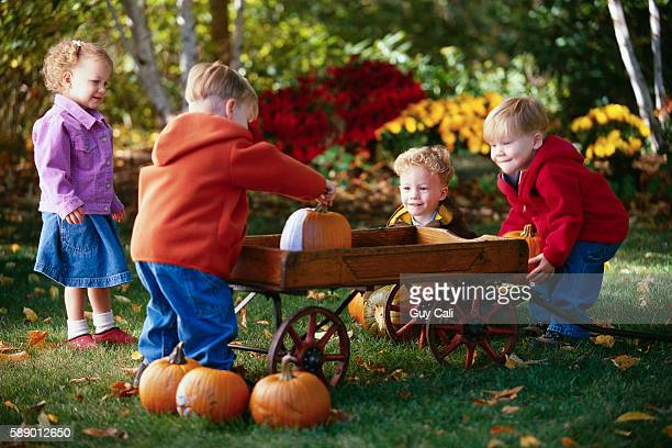 Quadruplet Children Loading Pumpkins onto a Wagon