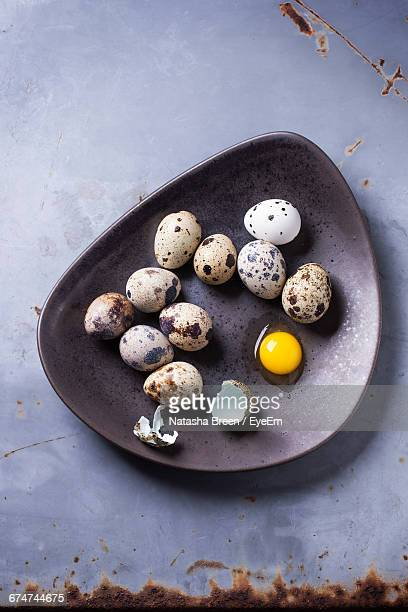 Quail Eggs In Ceramic Plate