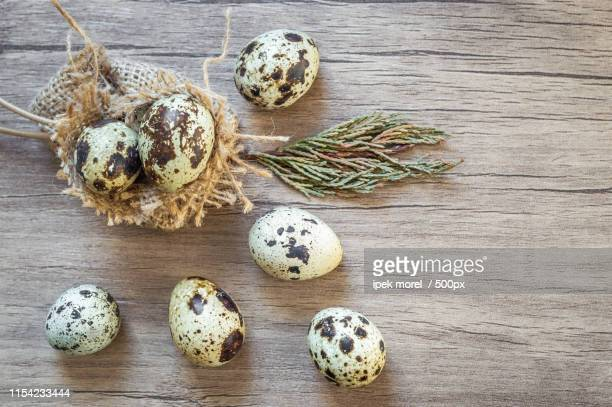 quail eggs on brown wooden background flat lay, top view - ipek morel stock pictures, royalty-free photos & images