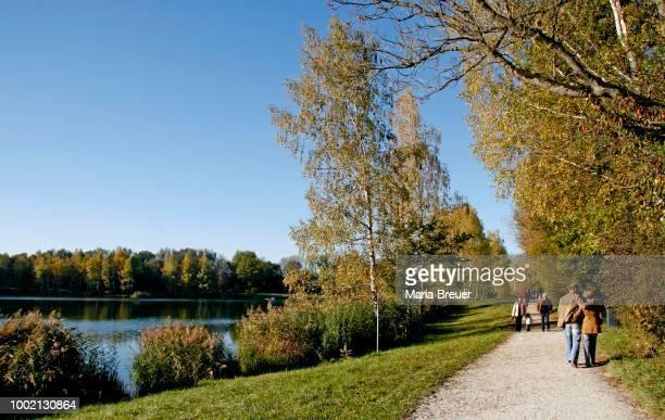quarry pond, autumn, ingolstadt, bavaria, germany - インゴルシュタット ストックフォトと画像