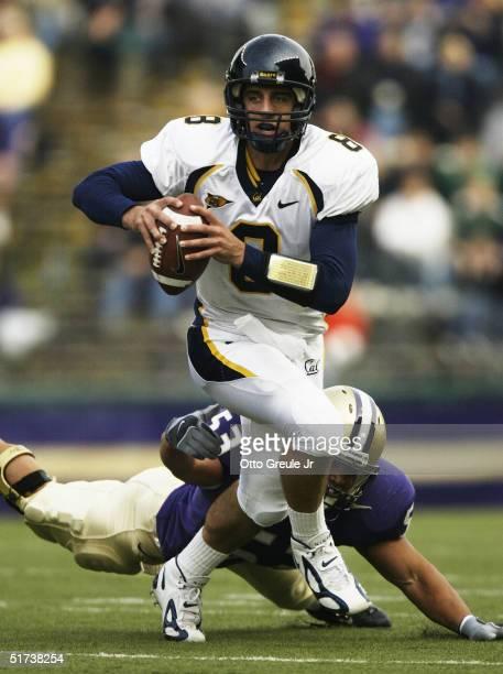 Quarterback Aaron Rodgers of the California Golden Bears scrambles against Joe Lobendahn of the Washington Huskies November 13, 2004 at Husky Stadium...