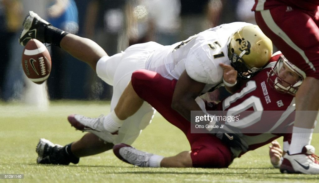Image result for washington state cougars sacked