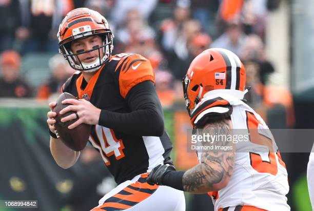 Quarterback Andy Dalton of the Cincinnati Bengals drops back to pass in the first quarter of a game against the Cleveland Browns on November 25 2018...