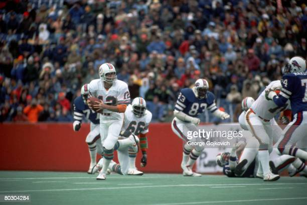 Quarterback Bob Griese of the Miami Dolphins scrambles during a game against the Buffalo Bills at Rich Stadium on November 12, 1978 in Orchard Park,...