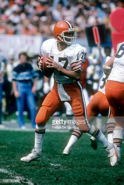 Quarterback Brian Sipe of the Cleveland Browns drops back to pass against the Houston Oilers September 13 1981 during an NFL football game at...