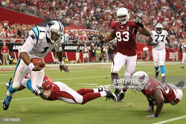 Quarterback Cam Newton of the Carolina Panthers is sacked by linebacker Paris Lenon of the Arizona Cardinals during the second quarter of the NFL...