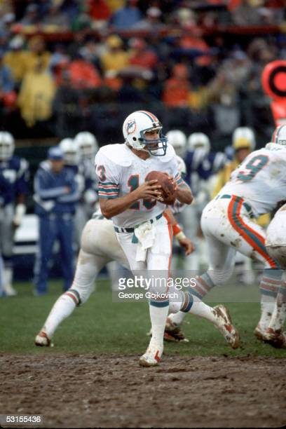 Quarterback Dan Marino of the Miami Dolphins drops back to pass against the Baltimore Colts at Memorial Stadium on October 23 1983 in Baltimore...