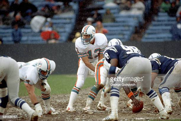 Quarterback Dan Marino of the Miami Dolphins prepares to take the ball from center as rain falls during a game against the Baltimore Colts at muddy...