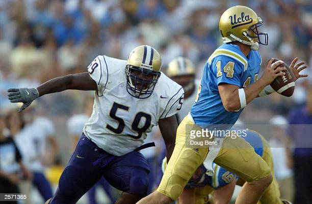 Quarterback Drew Olson of the University of California, Los Angeles Bruins attempt to get off a pass before being sacked by defensive tackle Jerome...