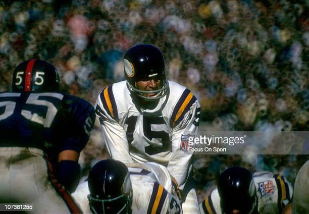 Quarterback Gary Cuozzo of the Minnesota Vikings stands under center against the New York Giants during an NFL football game at Yankee Stadium...