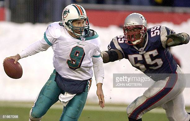 Quarterback Jay Fiedler of the Miami Dolphins is brought down by Willie McGinest of the New England Patriots in the fourth quarter 29 December at...