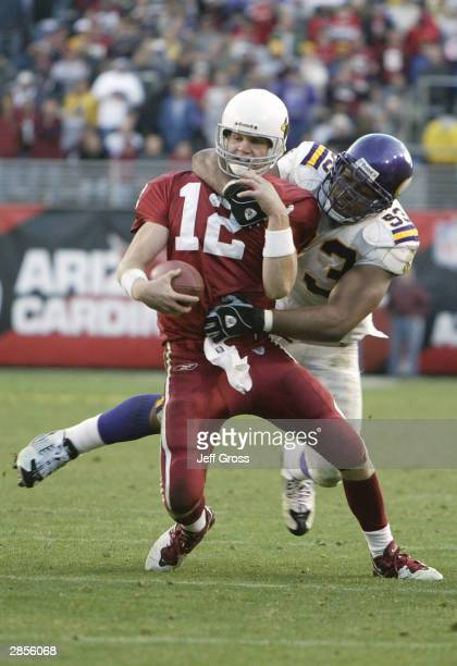 Quarterback Josh McCown of the Arizona Cardinals gets sacked by Kevin Williams of the Minnesota Vikings during the game on December 28 2003 at Sun...