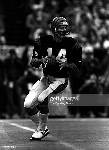 Quarterback Ken Anderson of the Cincinnati Bengals circa 1981 in Cincinnati Ohio Anderson played for the Bengals from 197186