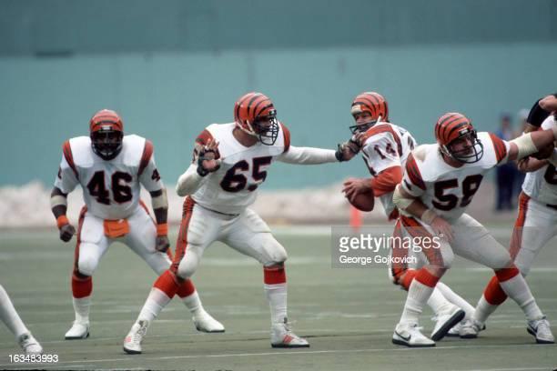 Quarterback Ken Anderson of the Cincinnati Bengals drops back to pass as offensive linemen Max Montoya and Blair Bush and fullback Pete Johnson block...