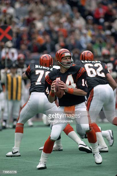 Quarterback Ken Anderson of the Cincinnati Bengals looks to pass against the Los Angeles Raiders at Riverfront Stadium on November 28 1982 in...