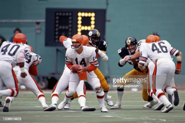 Quarterback Ken Anderson of the Cincinnati Bengals prepares to hand off the football to running back Charles Alexander while running back Pete...