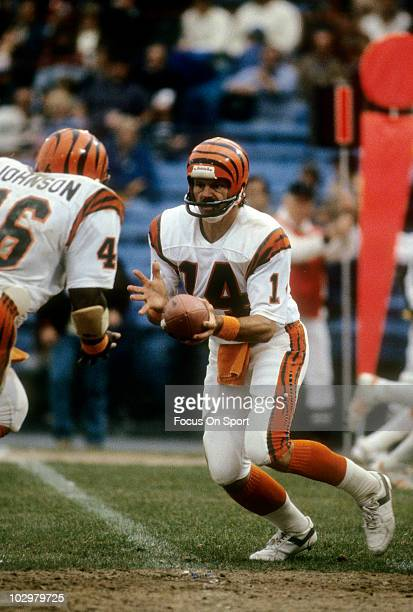 Quarterback Ken Anderson of the Cincinnati Bengals turns to hand the ball off to running back Pete Johnson circa 1981 during an NFL football game...
